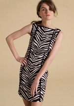 Jcrew_zebra_dress_2_3